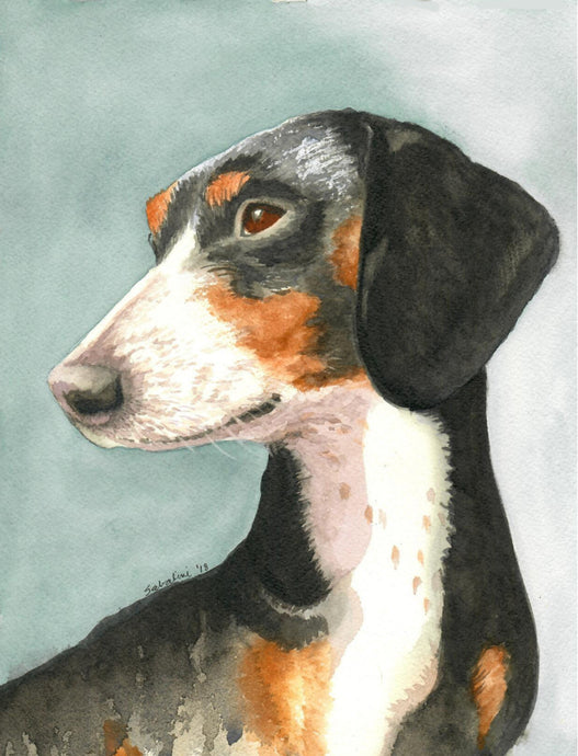 """Piebald dachshund"" Watercolor Nature"