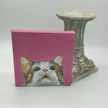 "Load image into Gallery viewer, ""Curious Kitten"" Acrylic Nature"