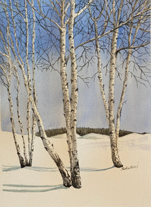 """Birch Trees"" Watercolor Landscape"
