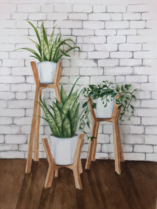 """Plant Stands"" Watercolor Nature"