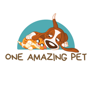 One Amazing Pet