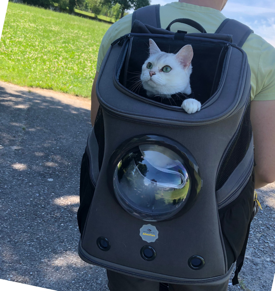 Deluxe ride for your cat <br> wherever you go