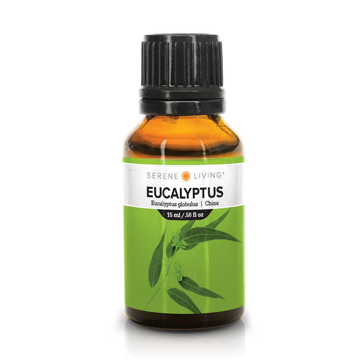 Eucalyptus Essential Oil - BodyFactory
