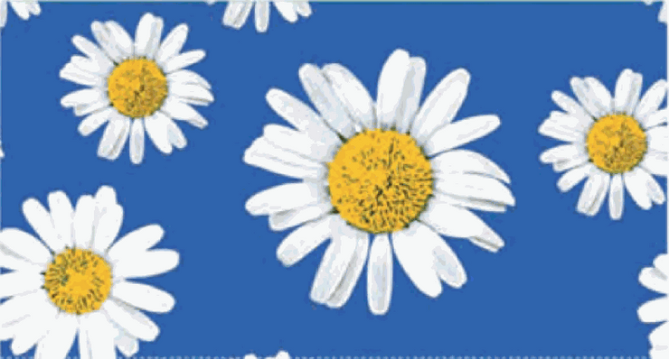 Embossed Matches Daisies Blue