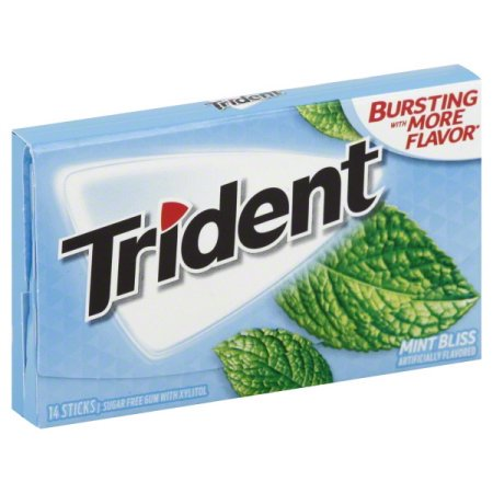 Trident Mint Bliss Gum - BodyFactory