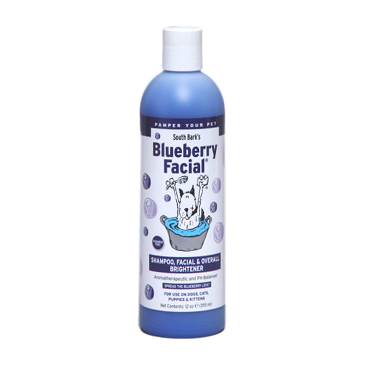 Blueberry Facial - BodyFactory