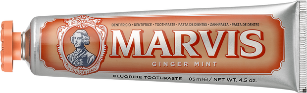 Toothpaste Ginger Mint 25ml - BodyFactory