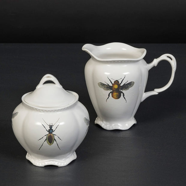 Jug & Bowl Insects - BodyFactory