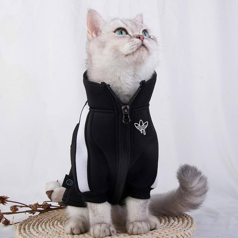 Sport Hoodie for Cat & Dog