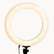18 inch Bi-color LED Ringlight with bag
