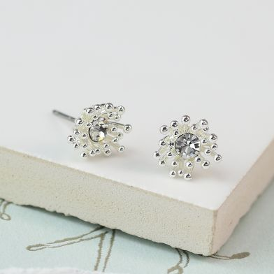 Silver Plated Cluster Earrings