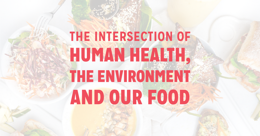 The Intersection of Human Health, the Environment and Our Food