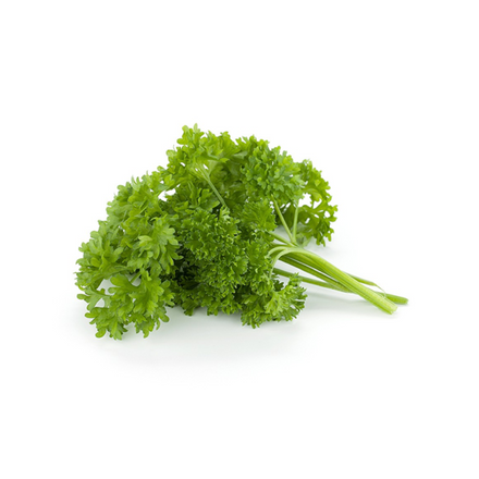 Parsley, Curly