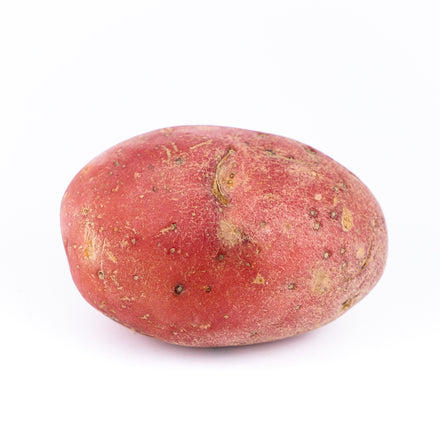Large Red Potato, Organic