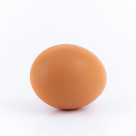 Single Medium Egg