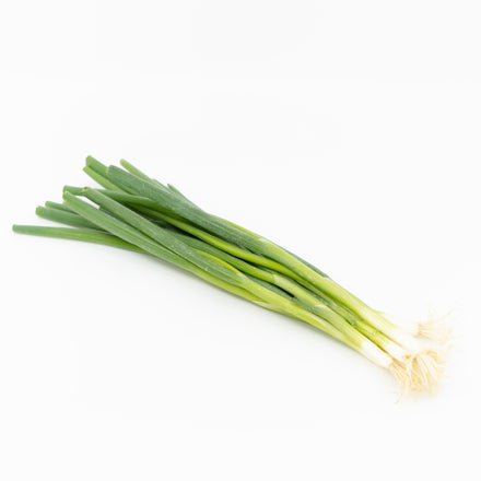 Green Onion Bunch, Organic