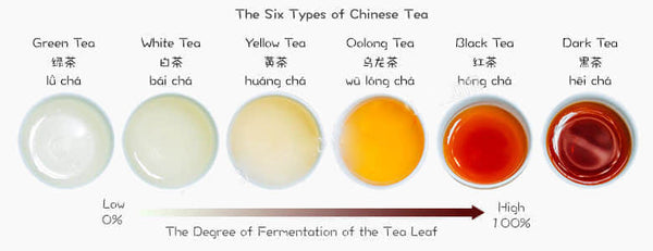 Tea types by oxidation level