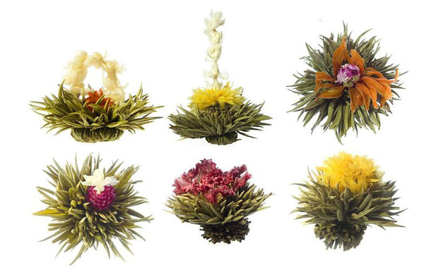 Organic Blooming Tea styles and flavors