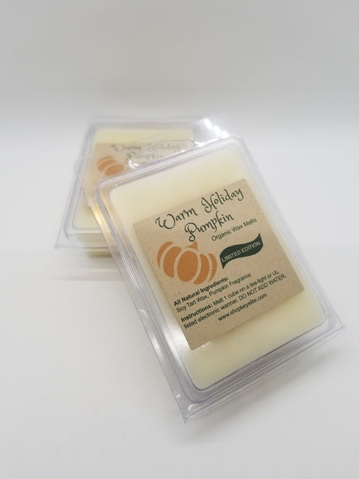Warm Holiday Pumpkin Wax Melts