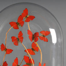 Load image into Gallery viewer, Oval Glass Dome with Red Butterflies