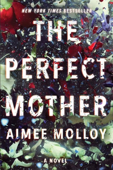 The Perfect Mother, Aimee Molloy