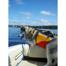 Load image into Gallery viewer, MTI Underdog Pet Life Jacket