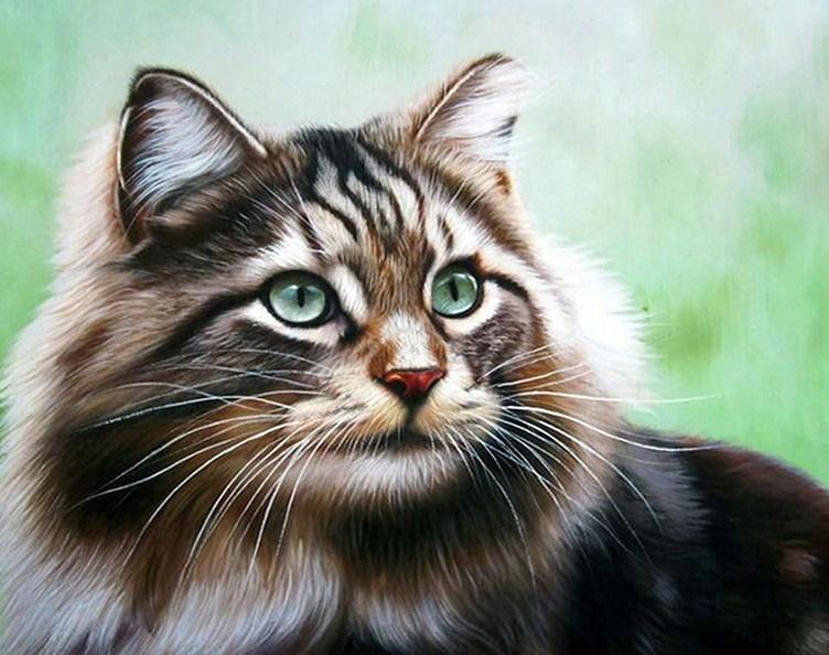 Adorable Cat - diamond-painting-bliss.myshopify.com