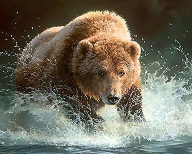 Bear Running in the Water - diamond-painting-bliss.myshopify.com