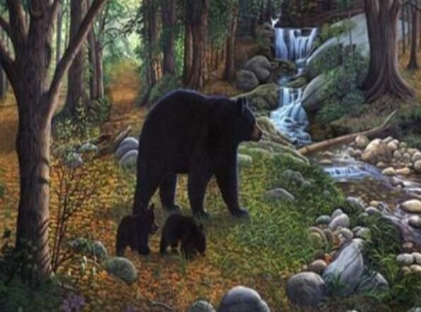 Black Bear with Babies - diamond-painting-bliss.myshopify.com