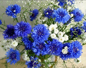 Blue Flowers 5D Diamond Painting - diamond-painting-bliss.myshopify.com