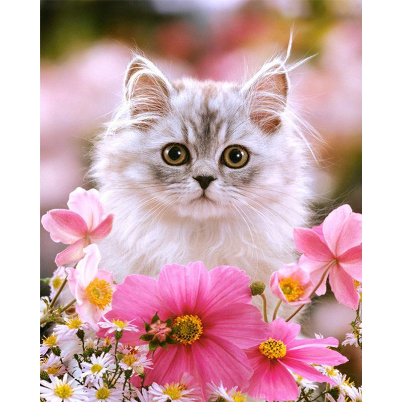 Cat Sitting in Flowers - diamond-painting-bliss.myshopify.com