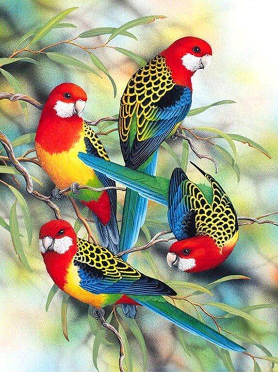 Colorful Parrots on Trees - diamond-painting-bliss.myshopify.com