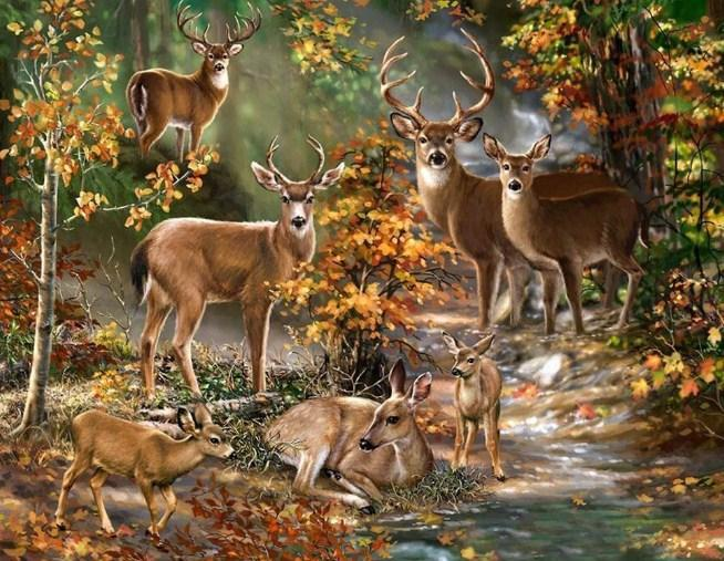 Deer Forest - Paint by Diamonds - diamond-painting-bliss.myshopify.com