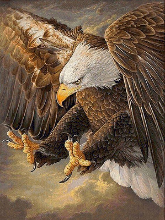 Eagle Catching his Target - diamond-painting-bliss.myshopify.com