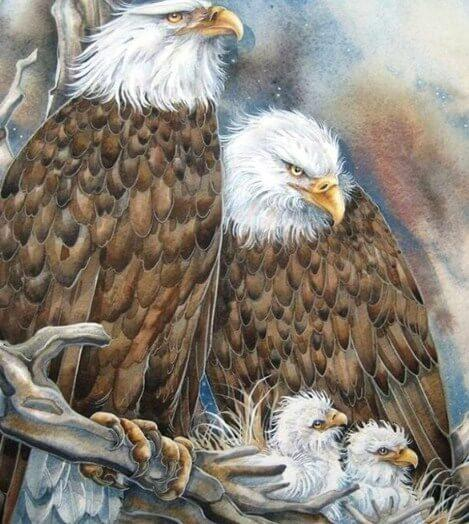 Eagle Family in the Nest - diamond-painting-bliss.myshopify.com