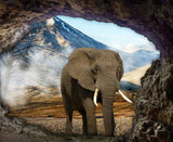 Elephant in the Cave - diamond-painting-bliss.myshopify.com