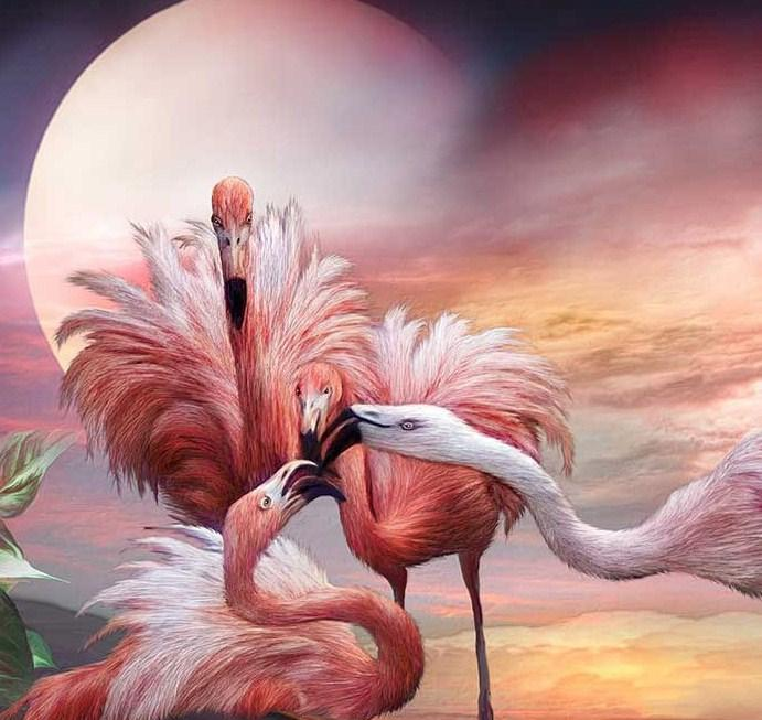 Flamingos Kiss- Paint by Diamonds - diamond-painting-bliss.myshopify.com