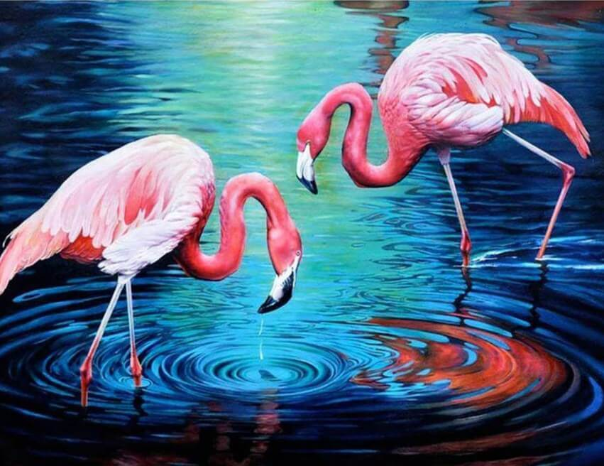 Flamingos Pair in Water - diamond-painting-bliss.myshopify.com