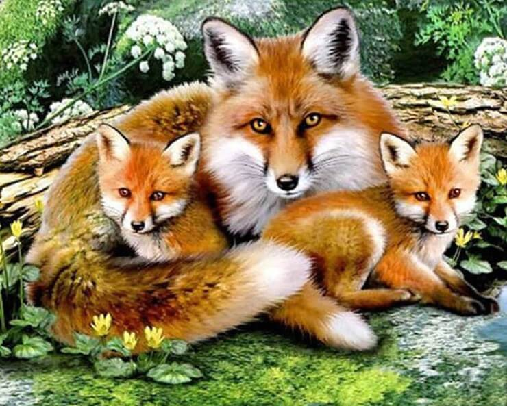 Fox Family DIY Painting Kit - diamond-painting-bliss.myshopify.com