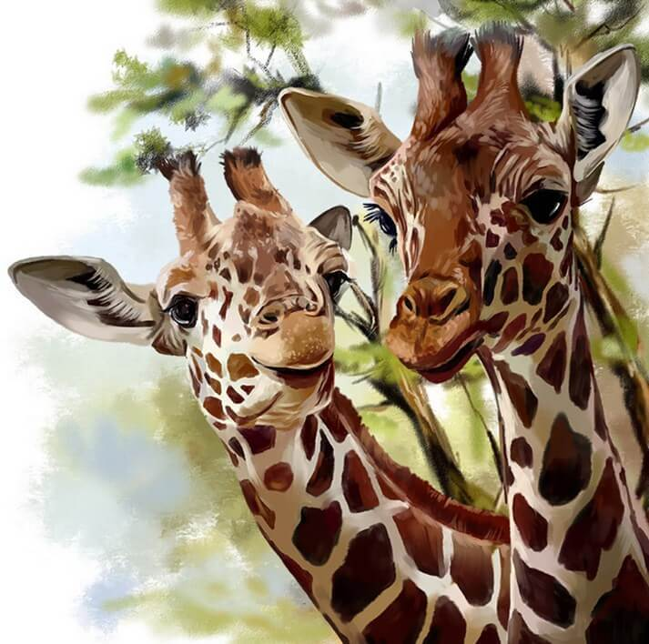 Giraffe Pair Diamond Painting Kit - diamond-painting-bliss.myshopify.com