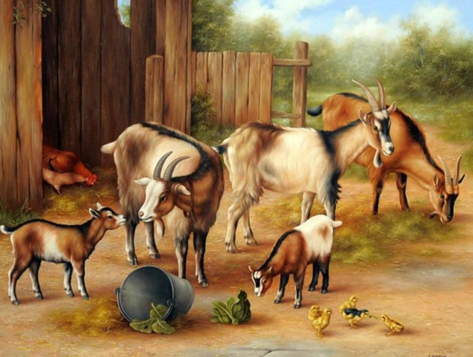 Goats & Chickens Painting Kit - diamond-painting-bliss.myshopify.com