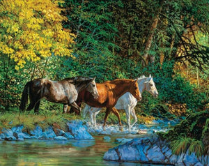 Horses at Water Stream - diamond-painting-bliss.myshopify.com