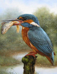 Kingfisher Eating Fish - Paint by Diamonds - diamond-painting-bliss.myshopify.com