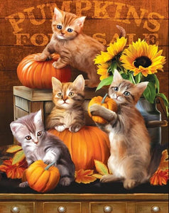 Kittens & Pumpkins - Paint by Diamonds - diamond-painting-bliss.myshopify.com
