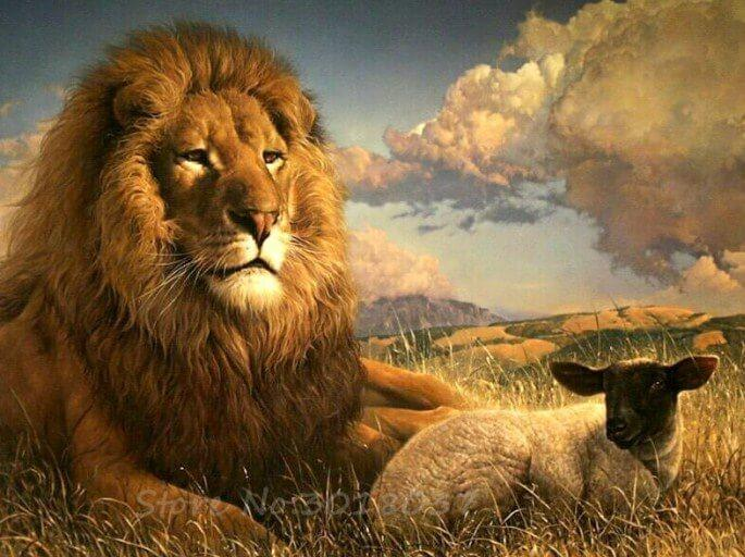 Lion & Lamb Sitting Together - diamond-painting-bliss.myshopify.com