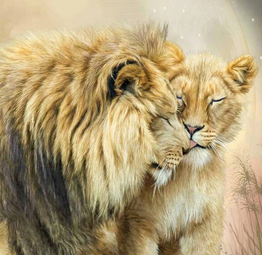 Lion & Lioness Love - diamond-painting-bliss.myshopify.com