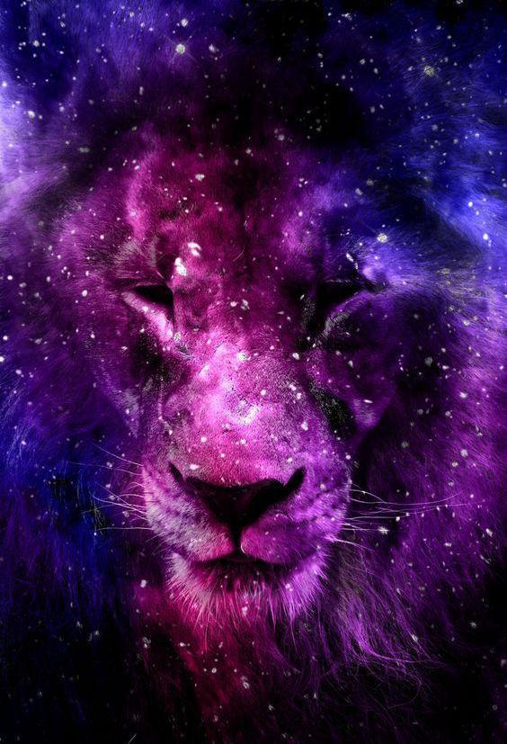 Lion Painting with Galaxy Background - diamond-painting-bliss.myshopify.com