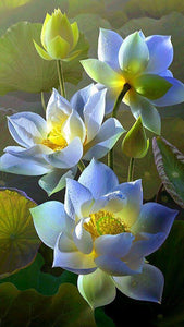 Lotus Flowers -Painting with Diamond - diamond-painting-bliss.myshopify.com