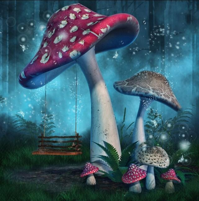 Mushroom World - Land of Fairies - diamond-painting-bliss.myshopify.com