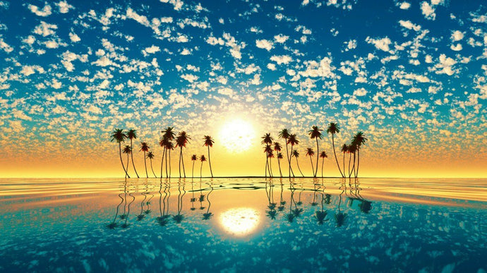Orange Sunset Clouds In Sky & Palm Trees - diamond-painting-bliss.myshopify.com